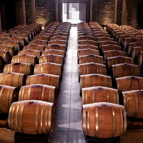 Bodegas Torres Winery, Barcelona