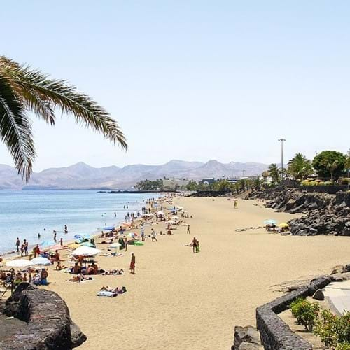 Expert Local Guide, Lanzarote