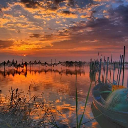 La Albufera - with optional boat trip